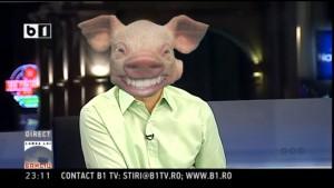banciu porc