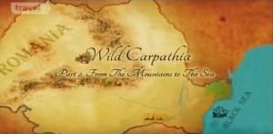 wild carpathia
