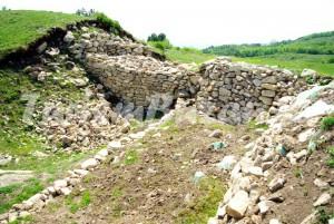 Cetatea dacica Gruiu Darii, Pietroasele