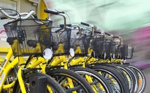 biciclete 1